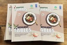 Alimentação Resiliente